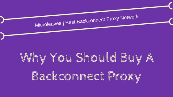 buy Backconnect Proxy