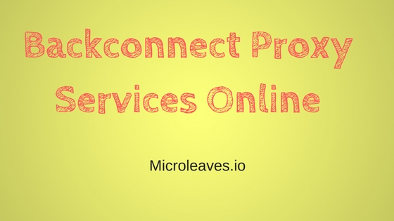 Proxy Services Online